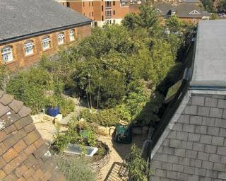 Diseñando un nuevo hogar: Permacultura en la ciudad