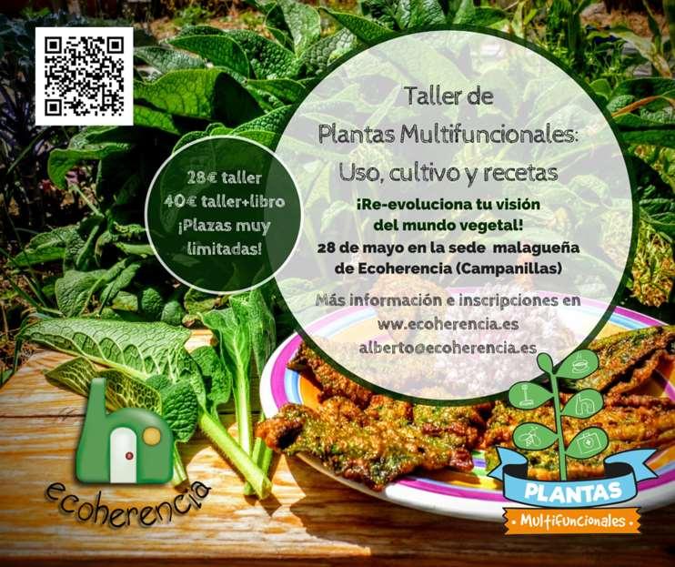 Abierto el plazo de inscripciones para los Talleres de Plantas Multifuncionales de primavera-verano