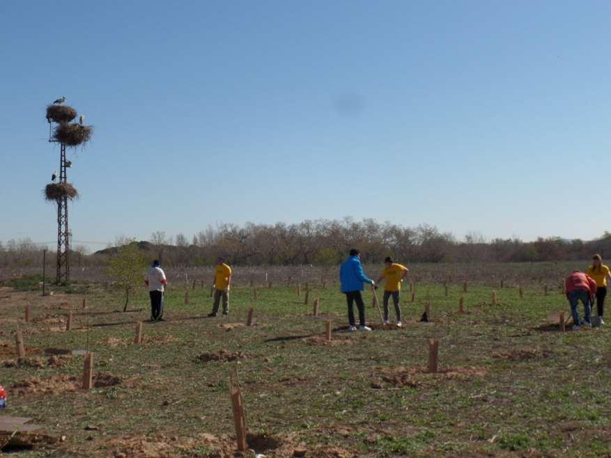 Reforestación en el Caserío del Henares con la Fundación Deporte y Desafío y la Fundación Prosegur