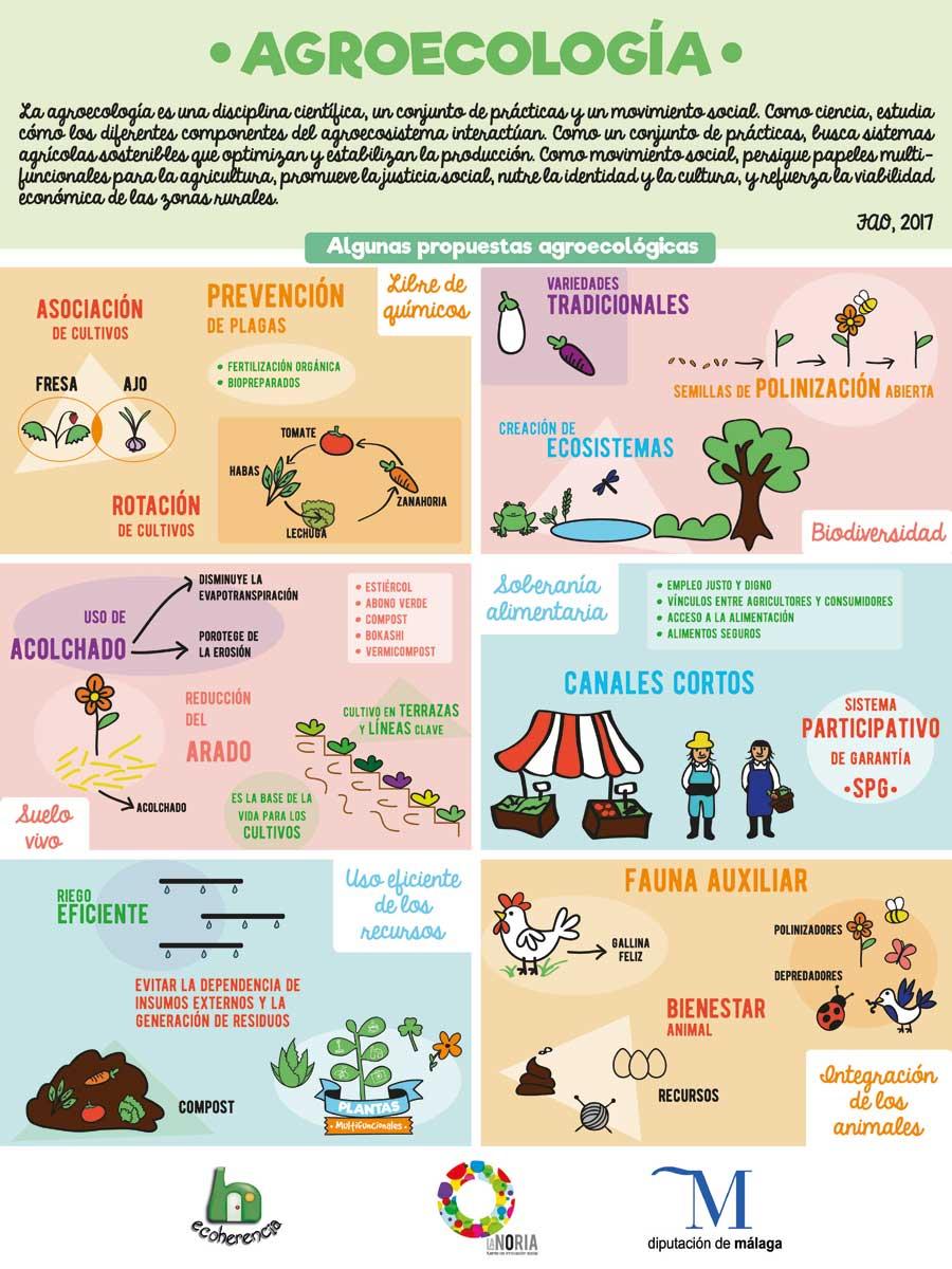 20171023-agroecologia_infografia_noria