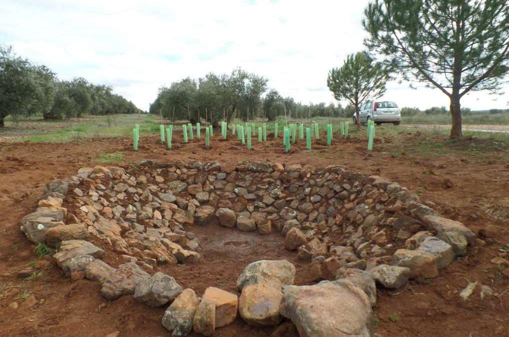 Construcción de una charca para anfibios bajo la figura de la custodia del territorio