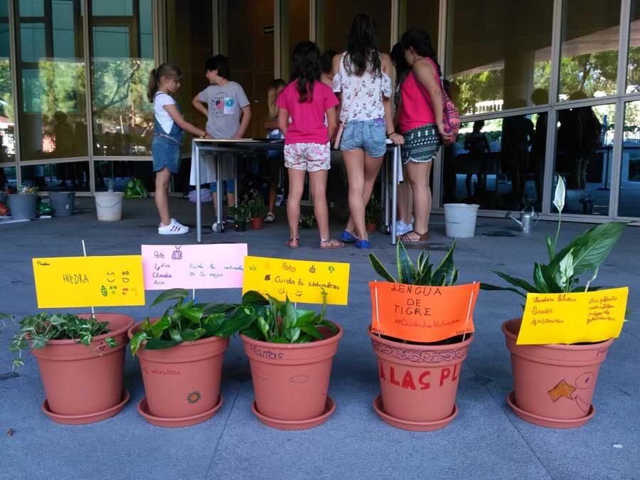 Plantas purificadoras y huerto urbano en el Family Day de Allianz Seguros