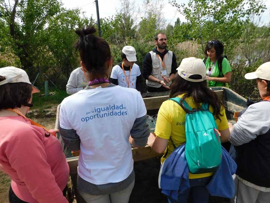 Huerto ecológico en El Campillo con OHL, la Fundación Randstad y Dinama