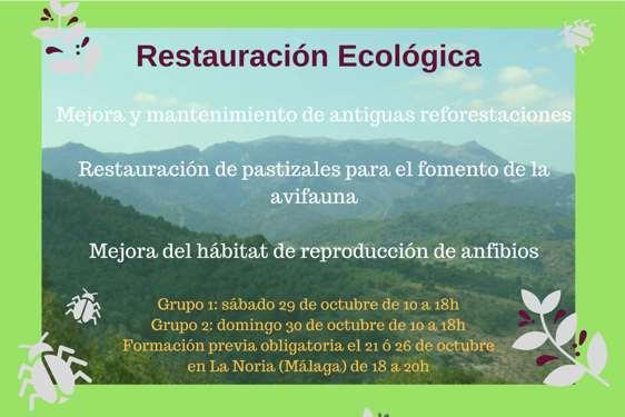 Voluntariado de Restauración Ecológica en la Sierra de las Nieves (Málaga)