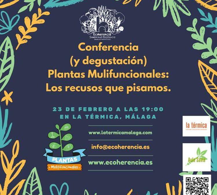 Talleres de PlaM y permacultura en La Térmica (Málaga)