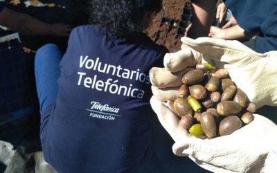 Celebramos el 15 aniversario del programa Día Internacional del Voluntariado de Telefónica con actividades en Madrid y Barcelona