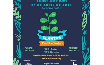 Taller de PlaM (Plantas Multifuncionales) organizado por La Reverde e impartido por Ecoherencia