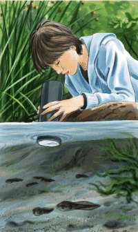 Unacuascopio es un aparato que nos permitirá observar el fondo de una charla, laguna, río o cualquier medio acuático