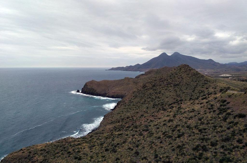 Recuperación del hábitat del azufaifo en Cabo de Gata