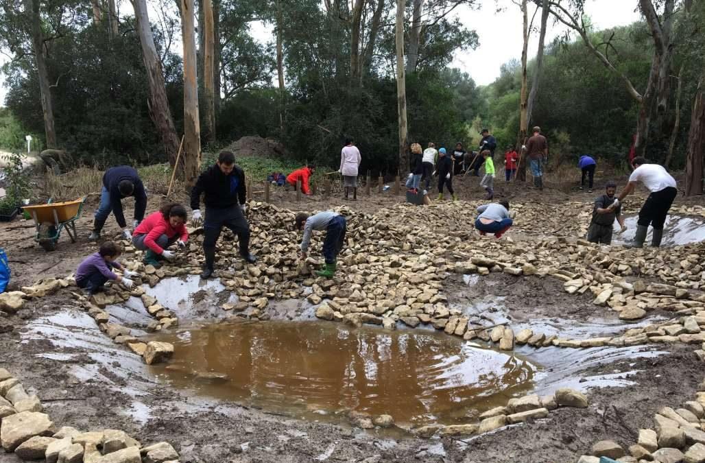 Restauración de Ecosistemas y participación ciudadana: construcción de seis charcas para anfibios