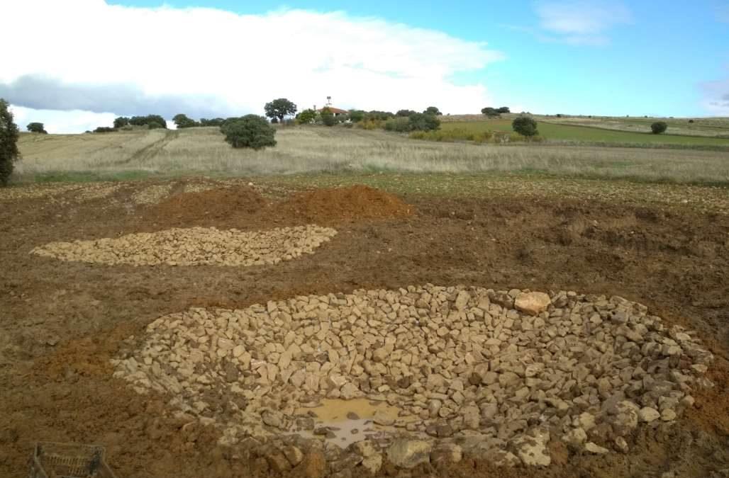 Restauración de Ecosistemas y participación ciudadana: construcción de dos charcas para anfibios en Castellar de Santiago