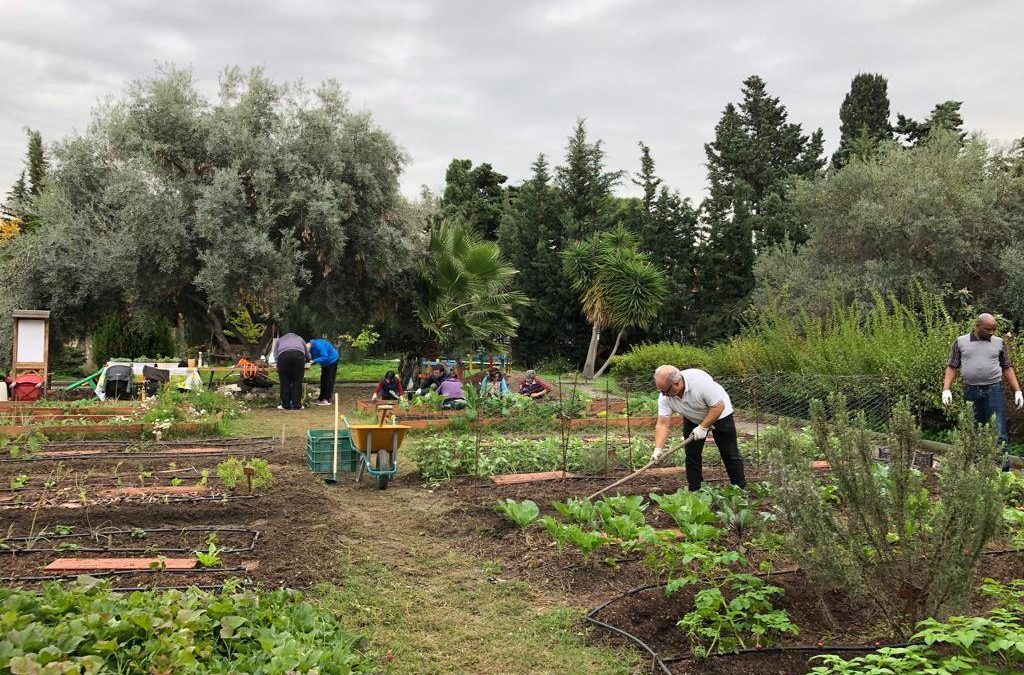 Vives Aprendes: Agroecología y huertos urbanos