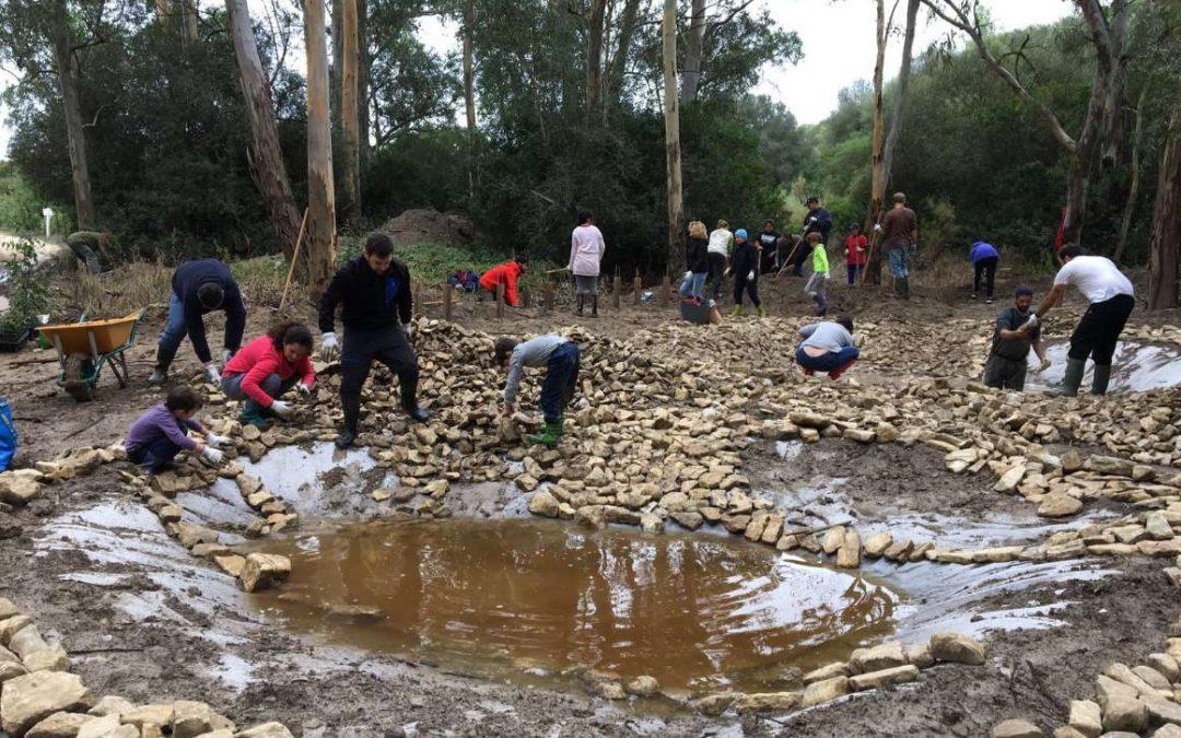 """""""Restauración de Ecosistemas y participación ciudadana: construcción de charcas para anfibios"""" resultados del proyecto"""