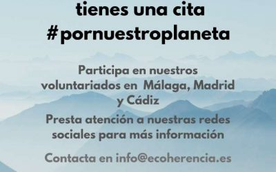 Ecoherencia se suma al movimiento mundial para plantar y regar árboles por todo el planeta el 7 de septiembre