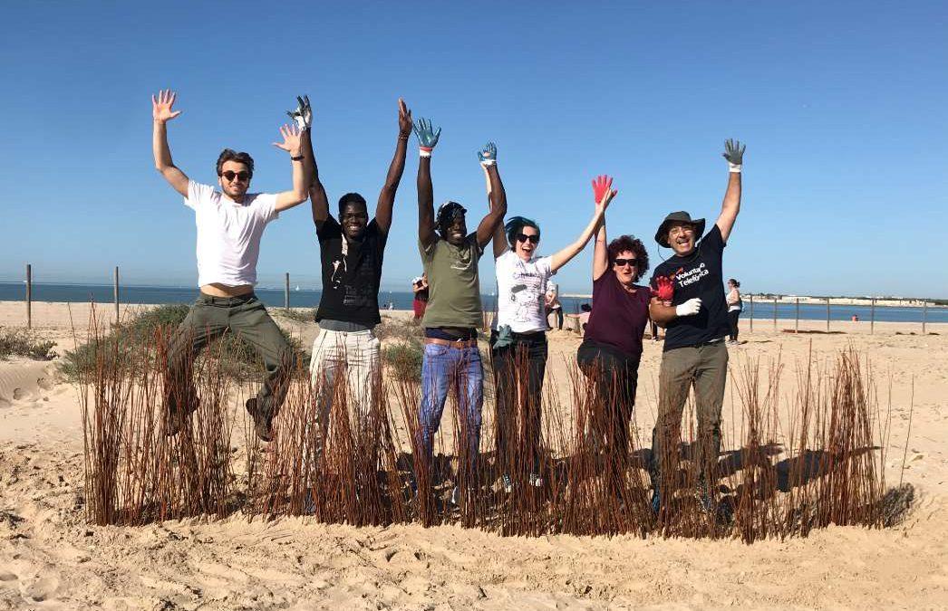 Recuperación de espacios costeros gaditanos: se inician las labores para mejorar el estado de las dunas de la Playa de Levante