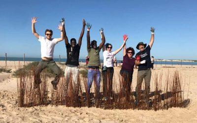 Se inician las labores para mejorar el estado de las dunas de la Playa de Levante en el Parque Metropolitano de Los Toruños y Pinar de la Algaida
