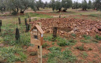 La biodiversidad es aliada de la agricultura